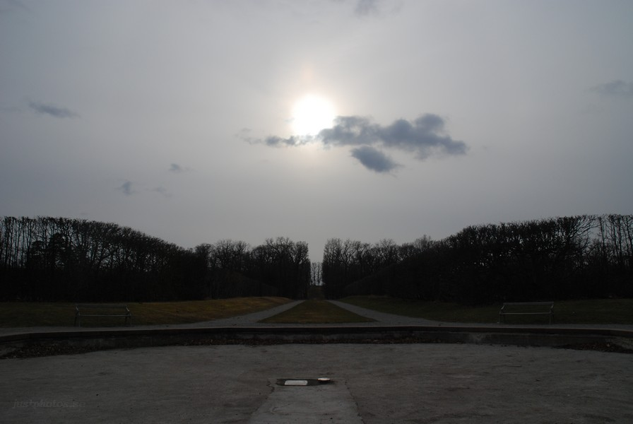 an allée in Drottningholm Palace Park