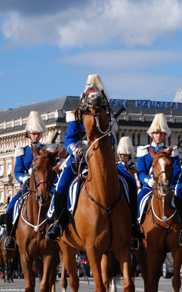 Swedish mounted Royal guard