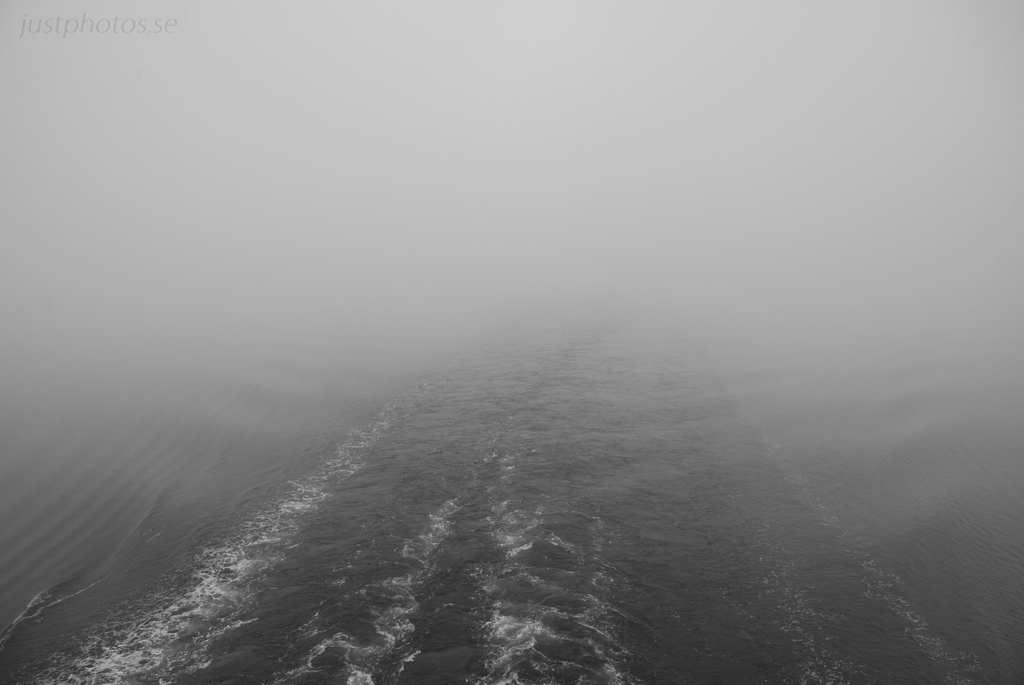 Foggy morning near Stockholm