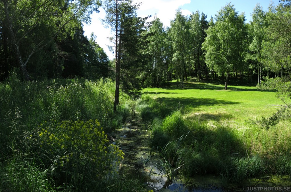a small brook on järvafaltet