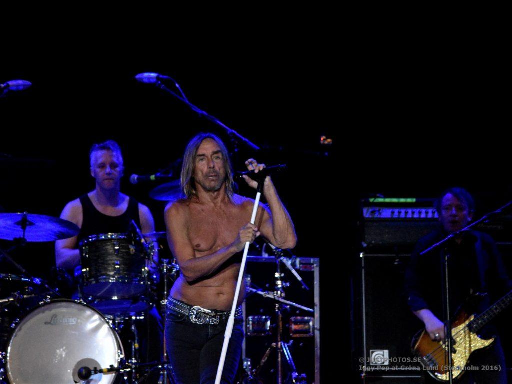 Iggy Pop concert 2016 in Stockholm3