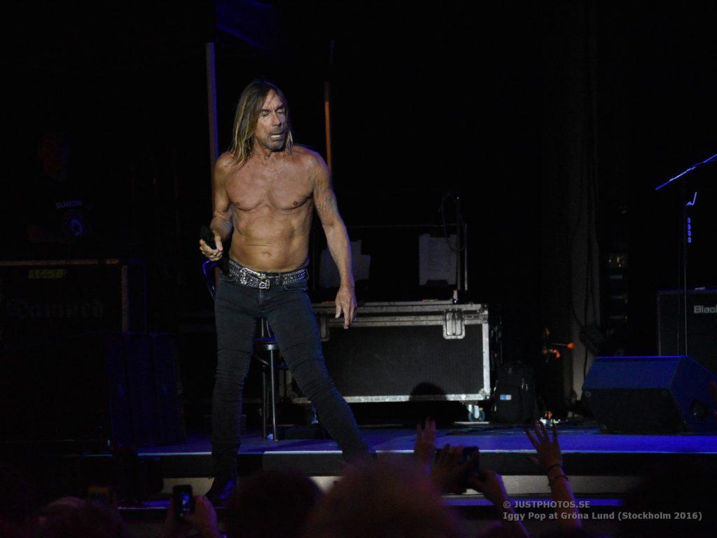 Iggy Pop concert 2016 in Stockholm7