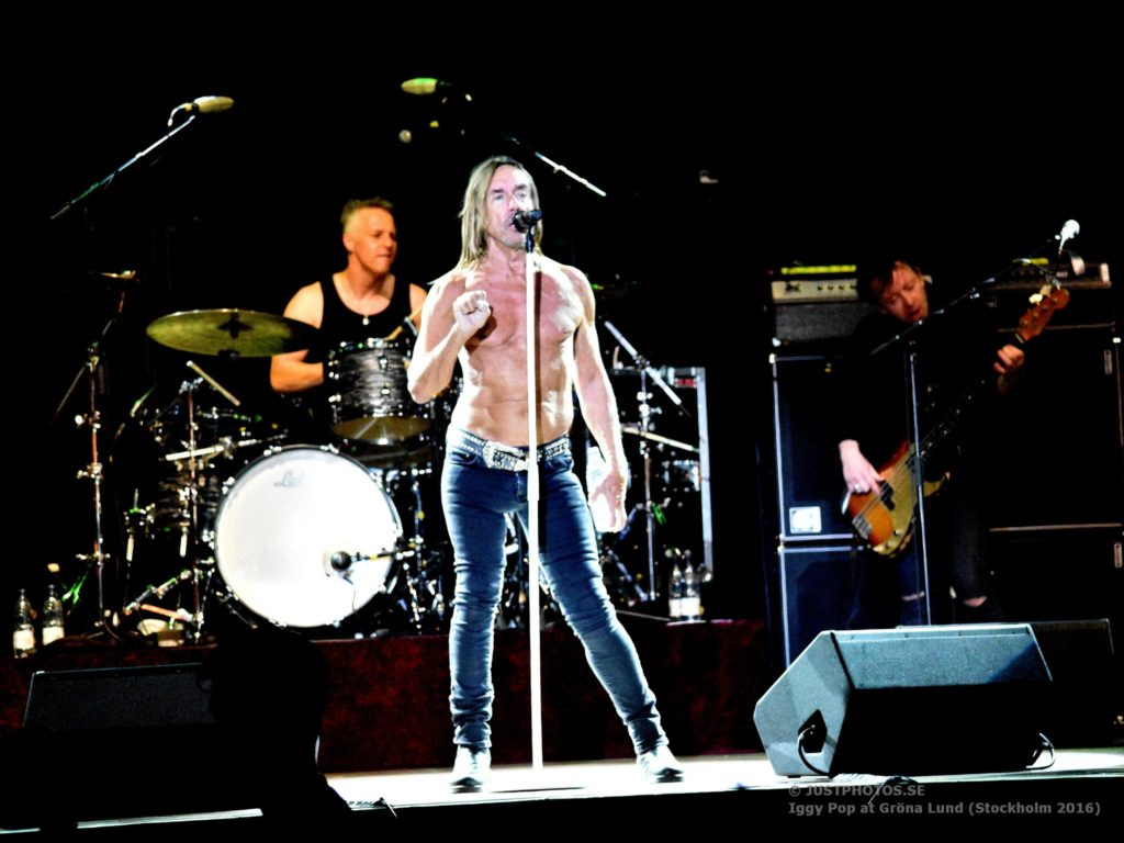 Iggy Pop concert 2016 in Stockholm8